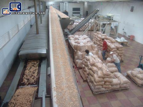 Automatizado de línea de producción de galletas capacidad 800 kg/h